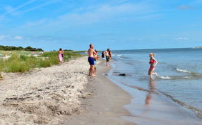 Utflykter södra Gotland